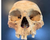 Study Boosts Credibility of Columbus' Cannibal Claims