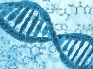 First Comprehensive Survey of Virus DNA Found Within Cancer Cells