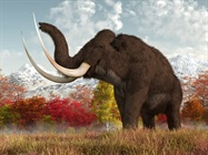 Study Resurrects Mammoth DNA to Explore the Cause of Extinction