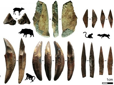 Discovery of Oldest Bow and Arrow Technology