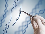 Paper: Congress Must Clarify Limits of Gene-editing Technologies