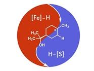 Chemists Develop New Method for Making Pharmaceutical Intermediates