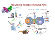 Therapeutic PD-1 Cancer Vaccine Shown to be Safe, Effective in Animal Study