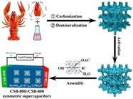 Researchers: Crayfish Shells Can Store Energy