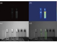 Bio-inspired Endoscope Provides 3D Visible, Near-infrared Images Simultaneously