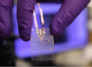 Lab-on-a-Chip has Potential to Detect COVID-19 Immune Response Faster