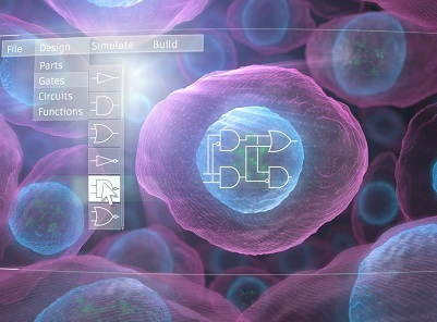 New technology enables predictive design of realized human cells